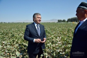 Shavkat Mirziyoyev: The main goal is to increase the incomes of farmers